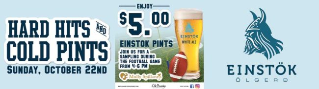 Hard Hits Cold Pints With Einstok at Molly Spillane's