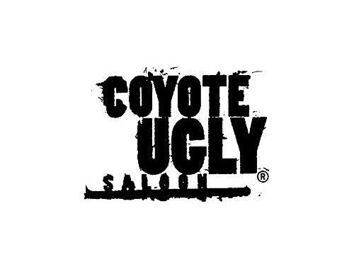 Coyote Ugly Saloon New York